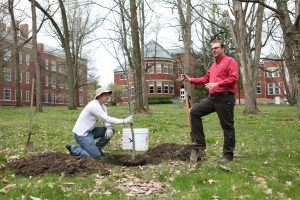 Tim Riley planting a tree in Arboretum