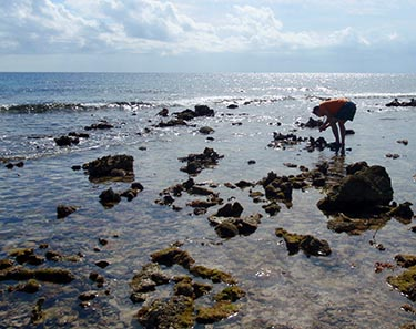 A photo from a previous Belize immersion trip.