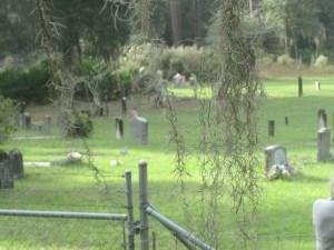 Sapelo Cemetery