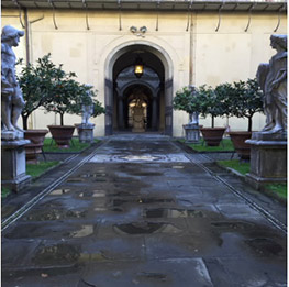 The Medici Courtyard
