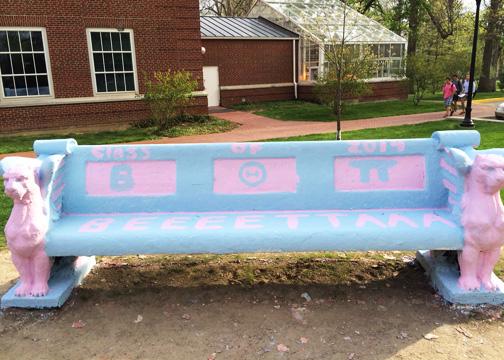 Beta bench front sm